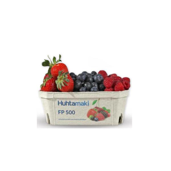 Papir posodica za pakiranje sadja in zelenjave